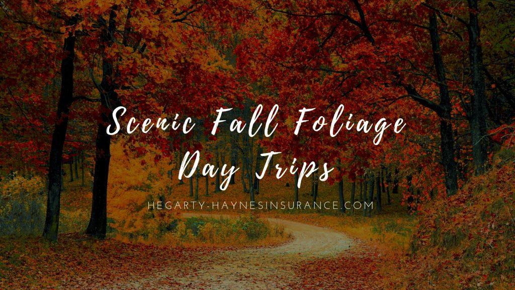 Scenic Fall Foliage